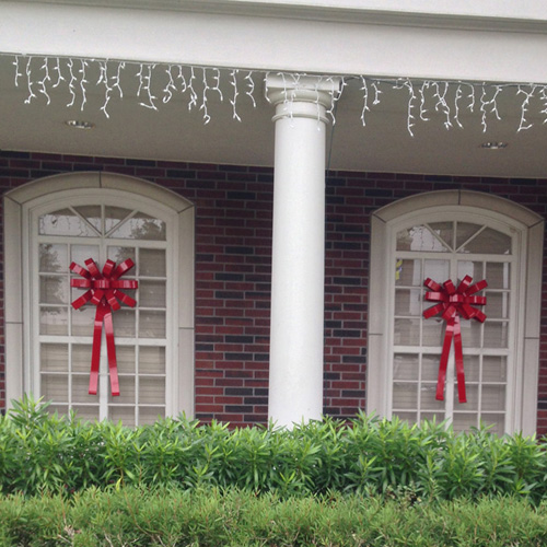 2 Red Christmas Bows on Windows